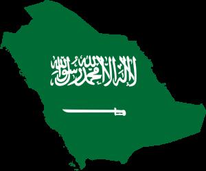 بطولة المملكة العربية السعودية بلوت